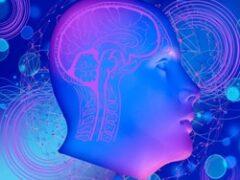 Искусственный интеллект и онлайн обучение